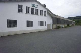 Büro zu mieten in An Der Ferndorf 16, 57271 Hilchenbach, Gewerbepark: Büro, Hallen und Freiflächen