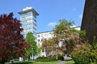 Büro zu mieten in Schenkendorfstraße 14, 08525 Haselbrunn, Gewerbepark WEMA - Verwaltungsgebäude, attraktive Büroflächen mit individuellem Grundrisskonzept