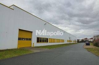 Gewerbeimmobilie mieten in 64521 Groß-Gerau, PROVISIONSFREI! | südlich von Groß-Gerau | Hallenfläche ab ca. 5.000 m²