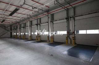 Gewerbeimmobilie mieten in 64560 Riedstadt, JETZT SICHERN! | gepflegte Hallenfläche | Rampe + ebenerdig | WGK 3 möglich