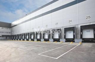 Gewerbeimmobilie mieten in 59269 Beckum, gehobene Ausstattung | PROVISIONSFREI | ca. 5.000 m² Hallenfläche | Rampe + ebenerdig