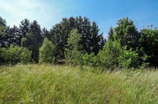 Grundstück zu kaufen in 95194 Regnitzlosau, Bauplatz mit altem Baumbestand