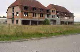 Gewerbeimmobilie kaufen in Birkenweg, 06295 Lutherstadt Eisleben, Gewerbe und Wohnrohbau 1450 Nutz-Wohnfl.,4363qm Grundst. Halle