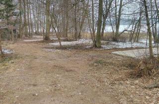 Grundstück zu kaufen in 17235 Neustrelitz, Grundstück direkt am See