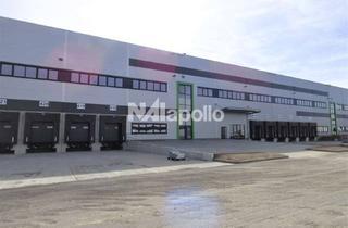 Gewerbeimmobilie mieten in 63517 Rodenbach, NAI apollo/PROVISIONSFREI/TOP-Neubau-Erstbezug/ca. 30.000 m² Logistikflächen (teilbar) zu vermieten