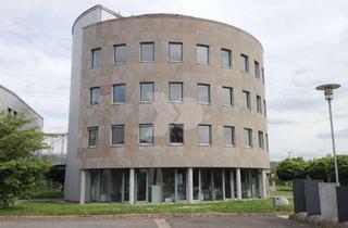 Gewerbeimmobilie mieten in Industriestraße 16, 97483 Eltmann, Neubau Lager- und Produktionshallen / Direkt BAB 70