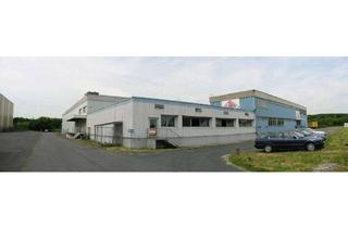 Gewerbeimmobilie mieten in 60388 Bergen-Enkheim, Einlagerungs und Umschlagszentrum Rhein / Main 24 Std. Betrieb ab 50m² Einlagerungsmietfläche