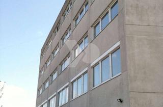 Büro zu mieten in Otto-Hahn-Straße 11, 64579 Gernsheim, Anmietung direkt vom Eigentümer – Moderne Büroflächen