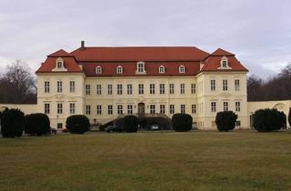 Büro zu mieten in Dorfstraße 35, 04808 Wurzen, Großzügige Büro/Praxisräume im Schloss