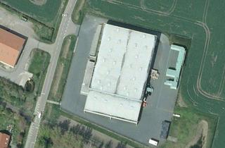 Büro zu mieten in Delitzer Straße, 06246 Bad Lauchstädt, temperiertes Lager + Büro - moderne Logistikanlage