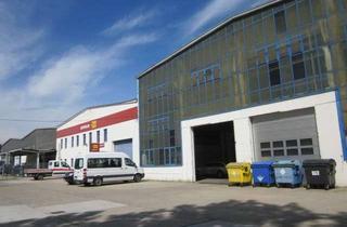 Büro zu mieten in Dissenchener Straße 50, 03042 Sandow, Lager-, Büro- und Freiflächen in Sandow