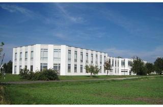 Gewerbeimmobilie mieten in Am Stadtweg, 39167 Niederndodeleben, ! Viel Platz für Ihre Ideen ! ca. 1.300 m² Fläche !