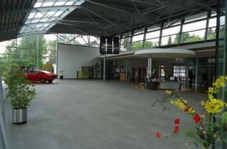 Immobilie kaufen in 37445 Walkenried, Interessantes Gewerbeobjekt - Autohaus mit Werkstatt