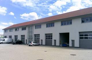 Büro zu mieten in Im Elmen, 96146 Altendorf, Ansprechende Bürofläche (Glasfaser) (ab 35m² ) in neu errichteter Gewerbehalle.