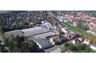 Gewerbeimmobilie mieten in 38723 Seesen, Direkt an der A7: 45.000m² Gewerbepark mit vielfältigen Nutzungsmöglichkeiten