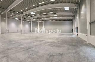 Büro zu mieten in 65474 Bischofsheim, *Provisionsfrei* JETZT sichern - ca. 6.116 m² attraktive Hallenfläche mit Mezzanine- und Büroflächen