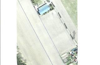 Grundstück zu kaufen in Klosterstrasse 66, 39638 Letzlingen, Verkaufe Bauerwartungsland 2,2485 ha