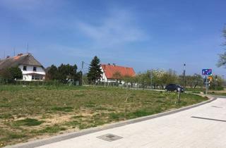 Grundstück zu kaufen in Seestrasse, 23942 Dassow, Landwirtschaftsfläche an der Ostsee mit Potential in herrlicher Gegend in Barendorf-Harkensee