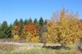 Grundstück zu kaufen in 89520 Heidenheim, Großes Grundstück (ca. 2810 m²) im Grünen nahe Heidenheim Aalen zu verkaufen - provisionsfrei