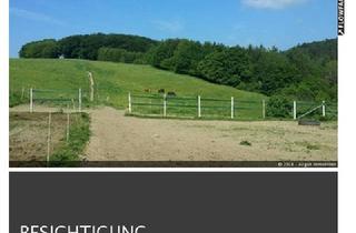 Haus kaufen in 57612 Idelberg, Wunderschöne Lage mit Offenstall Paddocks arrondiert 15.648 qm !!