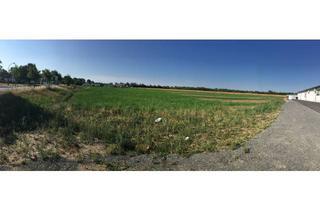 Gewerbeimmobilie kaufen in 04552 Borna, Exklusiv und unbebaut: Grundstück am SB-Warenhaus in Borna