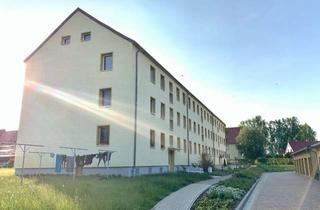 Wohnung mieten in Hauptstraße 44, 18519 Miltzow, NEU renovierte 2-Zimmer-Wohnung in Reinkenhagen + 500€ Umzugskostenhilfe