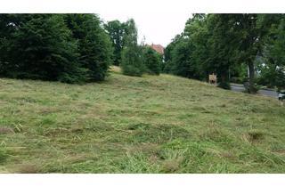 Grundstück zu kaufen in 01917 Kamenz, Baugrundstück in Kamenz