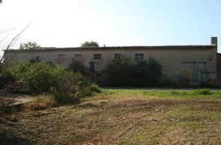 Grundstück zu kaufen in Schafseer Str., 06279 Schraplau, Kleiner landwirtschaftlicher Hof mit Einfamilienhaus und freiem Blick über das Weidatal