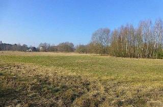 Grundstück zu kaufen in 15741 Bestensee, Waldgrundstücke westl. vom Pätzer Hintersee - Flur 8, Flurstücke 33, 367, 368