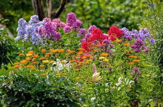 Grundstück zu kaufen in 58730 Fröndenberg, Ruhig gelegenes Bauland in sonniger Südhanglage!