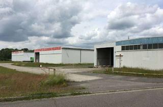Büro zu mieten in 18276 Gülzow-Prüzen, Produktionshalle, Gewerberäume, Lagerflächen, Büroräume zur Verpachtung (alt. Kauf PV-Anlage)