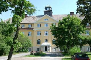 Büro zu mieten in 01454 Radeberg, Industriestil mit Potenzial!