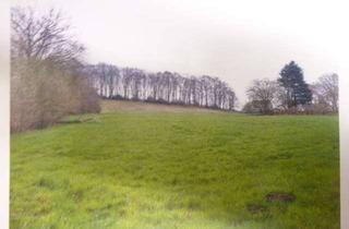 Grundstück zu kaufen in Esborner Straße, 58300 Wetter, Landwirtschaftliche Nutzfläche/ Hobbygrundstück, 13.368qm in Wetter