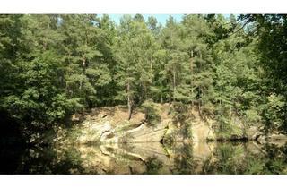 Grundstück zu kaufen in 02894 Vierkirchen, Grundstück im Wald mit Kranteich