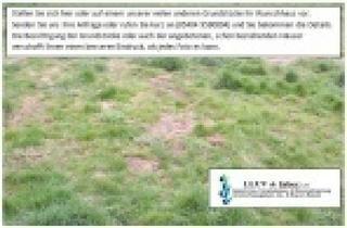 Grundstück zu kaufen in Schlotheim, 99994 Schlotheim, Ländliche Lage, großes günstiges Grundstück