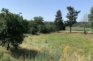 Grundstück zu kaufen in 01612 Nünchritz, Traumgrundstück mit unverbaubarem Elbblick an der Weinstraße in Diesbar-Seußlitz
