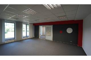 Büro zu mieten in 32278 Kirchlengern, Büro-/Praxisflächen in Kirchlengern zu vermieten