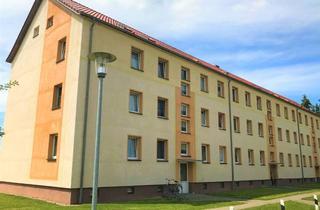 Wohnung mieten in Dorfstraße 40a-c, 18513 Grammendorf, Freundlich helle 2 Zimmer Wohnung!