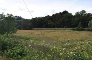 Grundstück zu kaufen in 57520 Steinebach, Schönes Baugrundstück in Steinebach