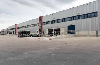 Gewerbeimmobilie mieten in 99994 Schlotheim, Neubau Logistikhalle nahe gelegen am Bahnhof und Flughafen
