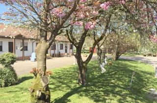 Wohnung mieten in 66663 Merzig, Erholung und Natur pur in einer charmanten Wohnung auf dem Reiterhof in Merzig