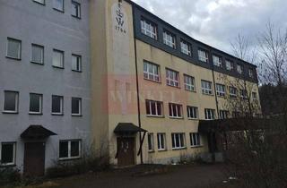 Gewerbeimmobilie mieten in 98739 Lichte, Fabrikgebäudekomplex in Lichte, Thüringen -Mehrfachnutzung möglich, ehemalige Porzellanmanufaktur-