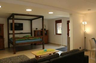 Wohnung mieten in 69483 Wald-Michelbach, 1-Raum Appartement in Wald-Michelbach, idyllisch mit gehobener Ausstattung