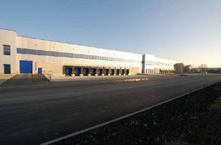 Gewerbeimmobilie mieten in 64807 Dieburg, Flexibel & kurzfristig: ca. 12.000 qm Logistik | 25x Rampe | 4-9 m UKB !
