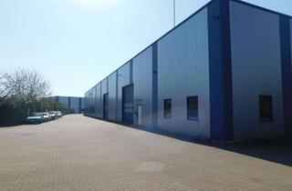 Gewerbeimmobilie kaufen in 47574 Goch, Gewerbeareal: Moderner Hallenkomplex mit Büro- und Sozialräumen in Goch