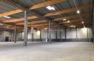 """Büro zu mieten in 64653 Lorsch, """"BAUMÜLLER & CO."""" ca. 2.000 qm flexible Hallenfläche - Büro verfügbar - seht gute Anbindung"""