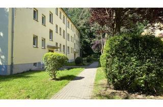 Wohnung mieten in Franzburger Straße, 18510 Wittenhagen, Neu renovierte 3-Raum-Wohnung im Grünen und nur 15 Minuten von Stralsund entfernt