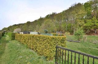 Grundstück zu kaufen in 09394 Hohndorf, Ihr Blick in die Zukunft verrät Ihnen 7740 m² Land!