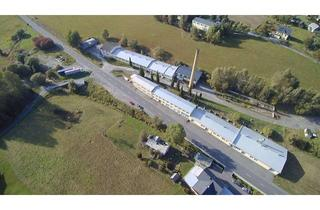 Gewerbeimmobilie kaufen in 09496 Marienberg, Grenznahes gewerbliches Kaufobjekt in Rübenau – Produktions- oder Lagerhalle, usw.