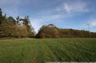 Gewerbeimmobilie kaufen in 98660 Kloster Veßra, Waldgrundstücke in 98660 St. Bernhard
